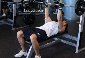 تقویت و رشد ماهیچه سینه با استفاده از تمرینات بدنسازی