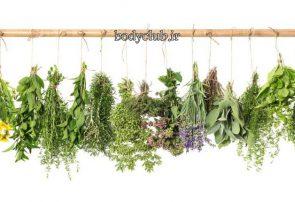 کاهش وزن با استفاده از دارو گیاهی(طب سنتی)